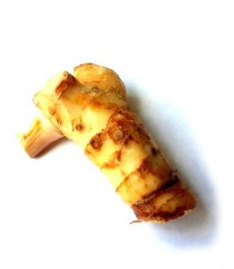 Fresh Galangal (Thai Galanga) | Buy Online at The Asian Cookshop